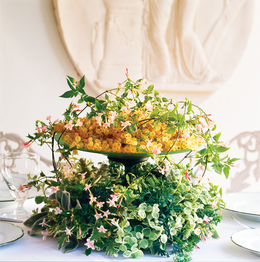 Jasmine steals the show in this compote arrangement of white currants, helichrysum, rue, scented geranium foliage, and lamb's ear. (Photo Courtesy of Shane Connolly LLP)