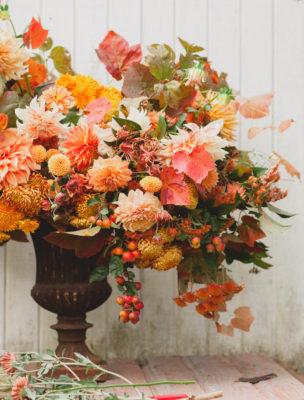 floret flower mums