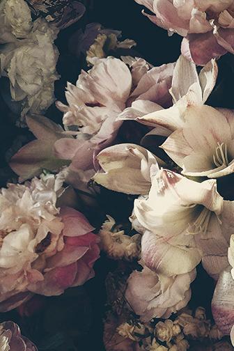Ashley Woodson Bailey Dutch Love floral wallpaper