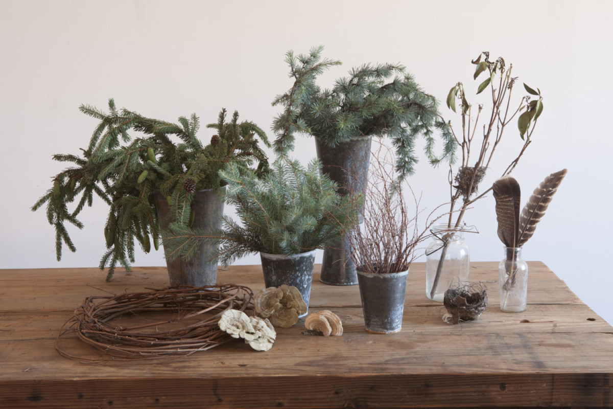 Evergreen and foraged materials for Amy Merrick's festive wreath
