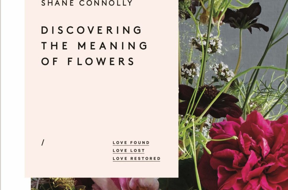 shane connolly book 2017
