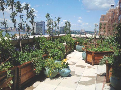 jon carloftis roof gardens