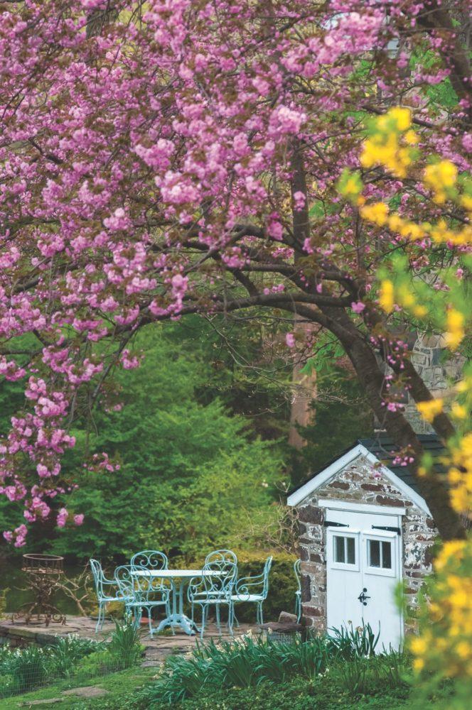 private gardens hortulus