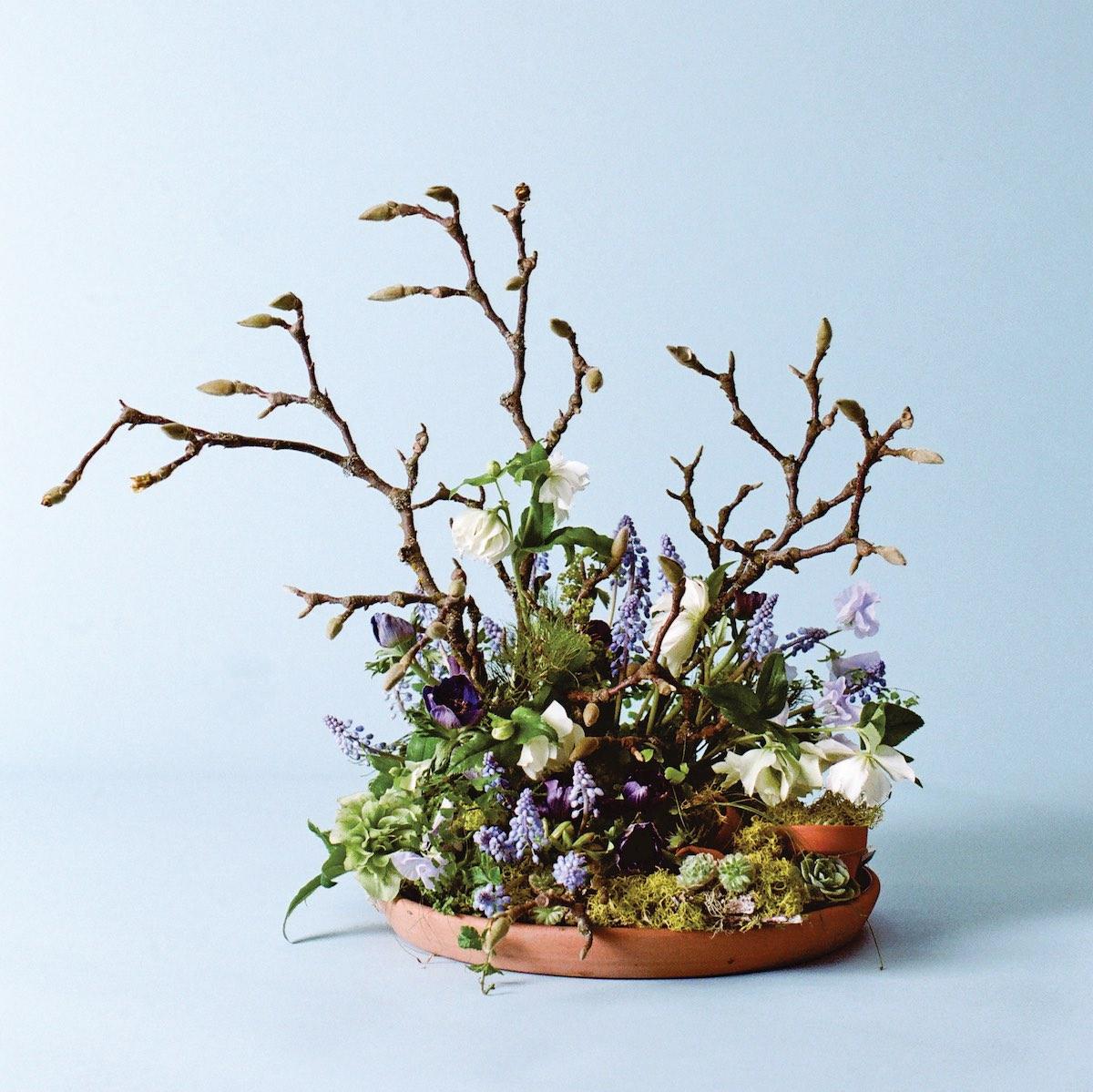budding branches arrangement