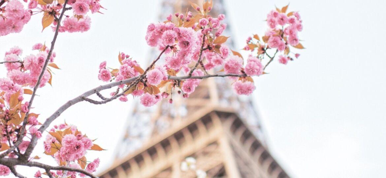 ParisInBloom_p006-Flowermag_1500x1908