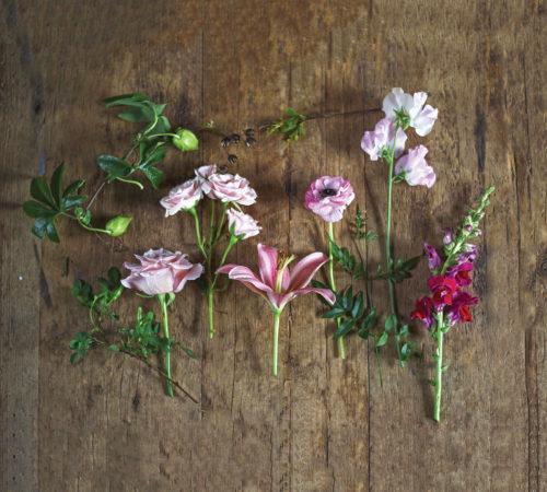 all-pink arrangement, ingrid carozzi