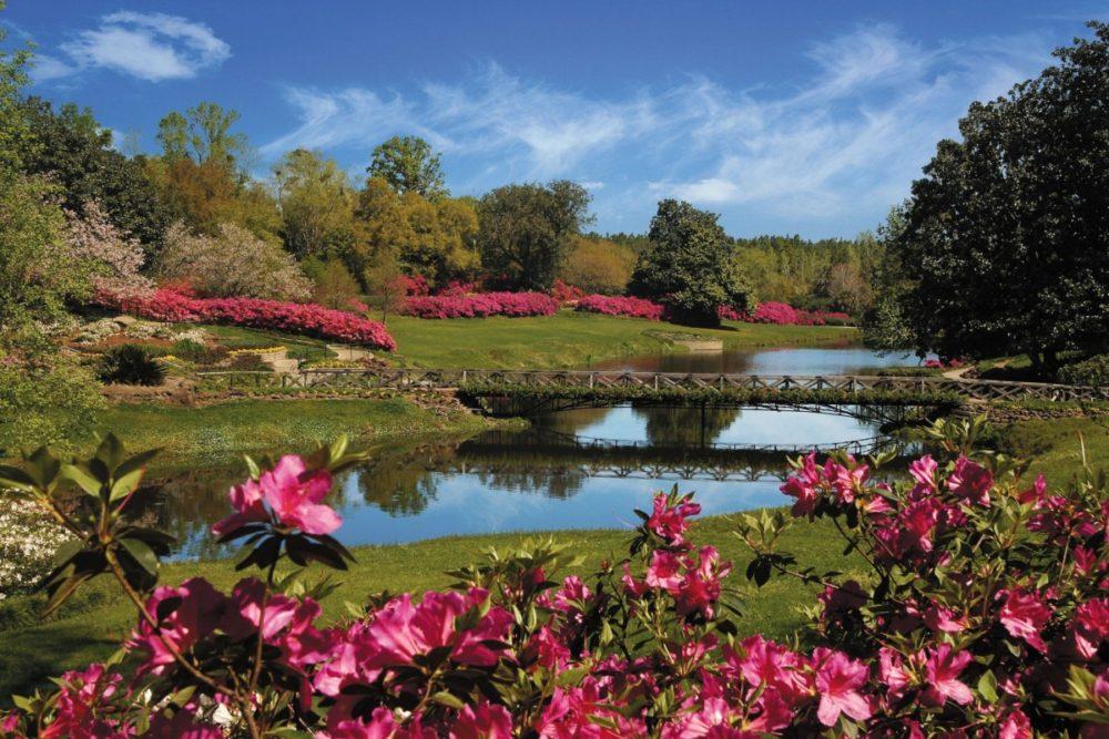 bellingrath gardens, mirror lake