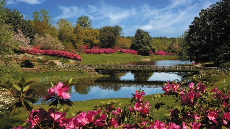 bellingrath gardens, mirror lake