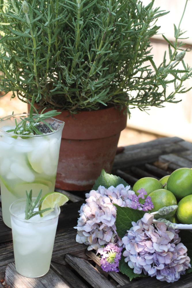 lavender limeade recipe, james farmer