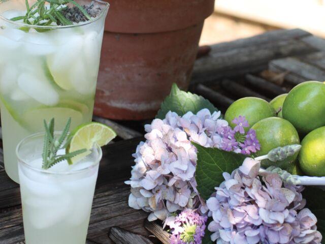 james farmer limeade, summer drinks