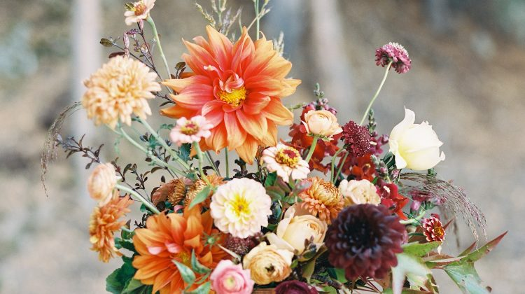 frances harjeet, dahlia arrangement