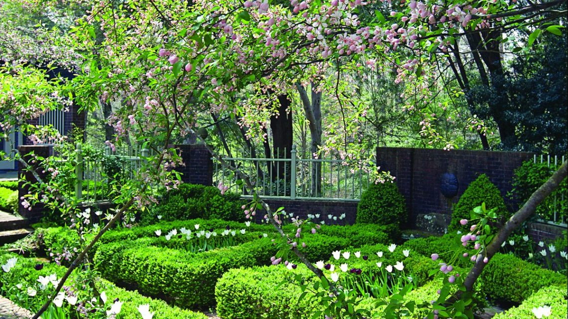 louise wrinkle garden