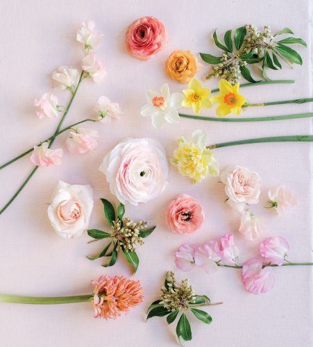 An overhead view of materials for a floral how-to, including 'Cloni' ranunculus, pink ranunculus, peach ranunculus, sweet peas, garden roses, daffodils ('Pink Charm,' 'Ice Follies,' and 'Pinza'), hyacinth, and andromeda flowers and folliage