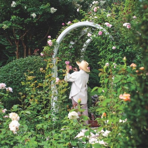 charlotte moss garden
