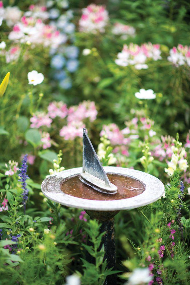 nantucket garden, nantucket cottage, bucktucket