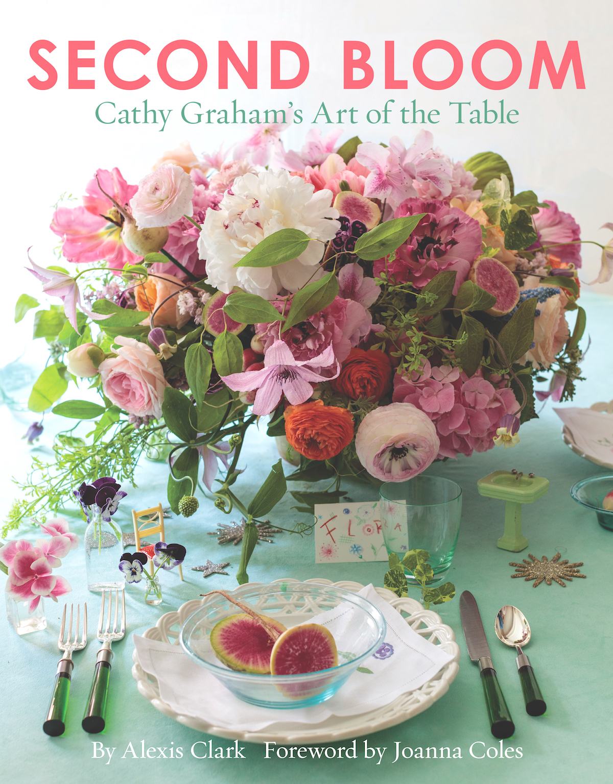 cathy graham book cover
