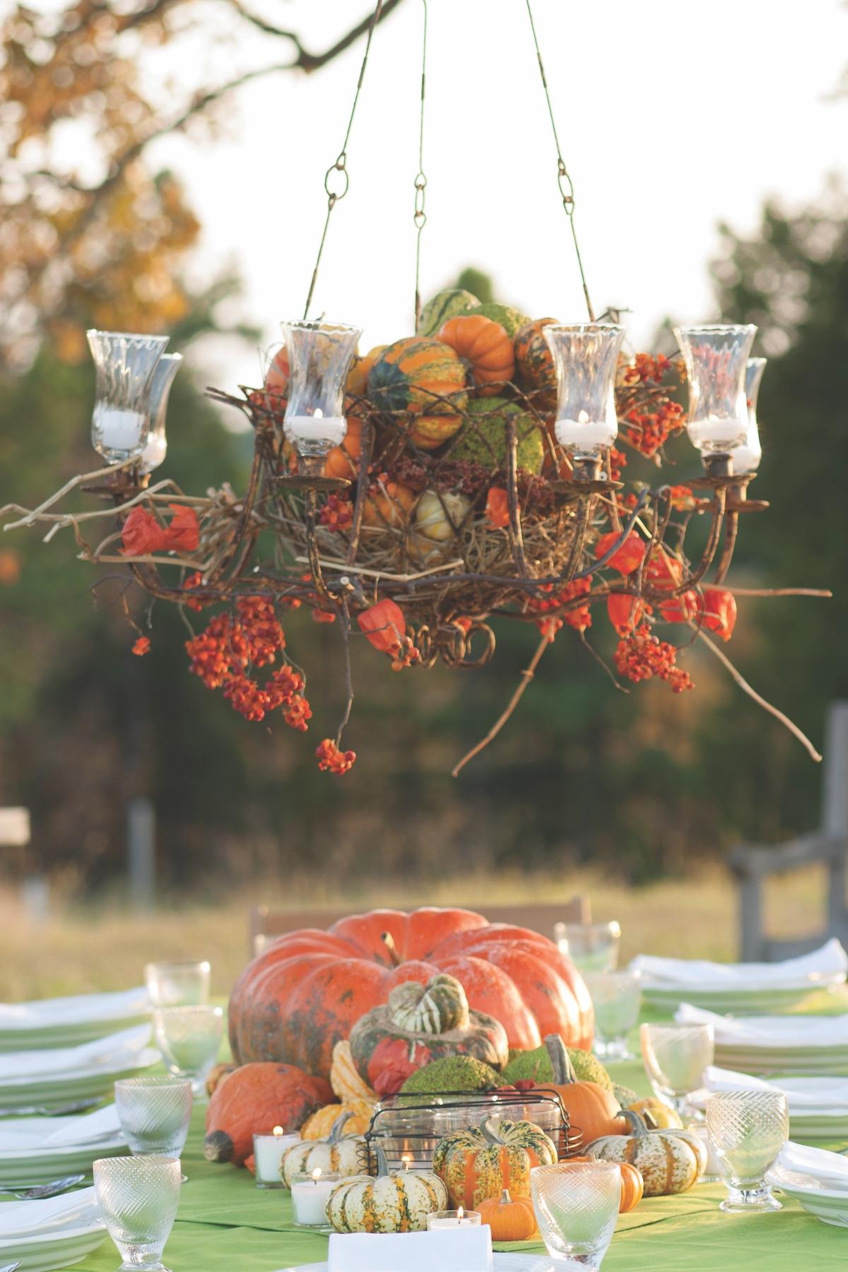 Pumpkin varieties, ornamental pumpkins
