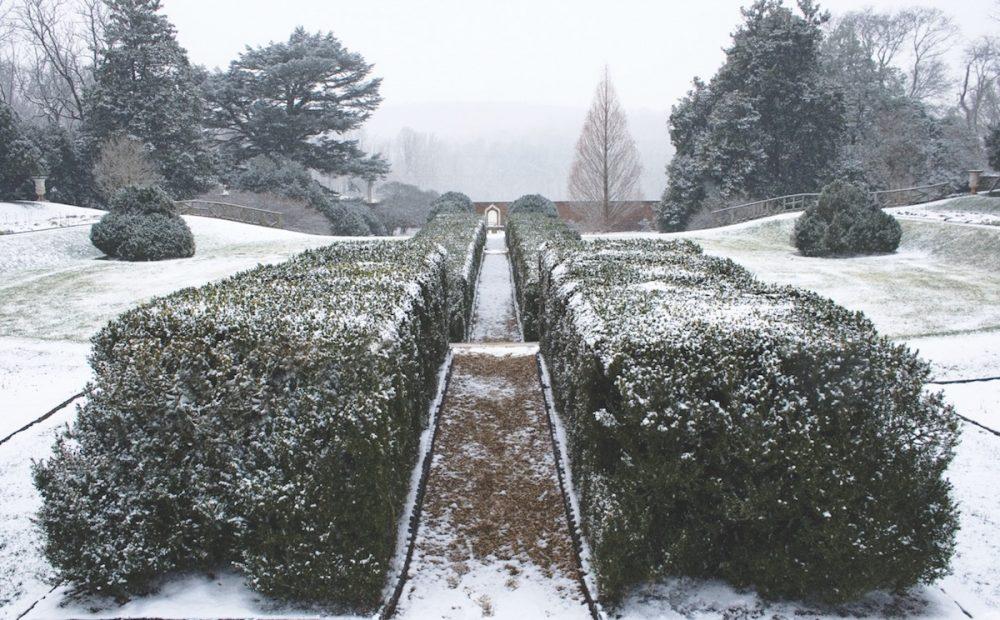 Montpelier, winter gardens