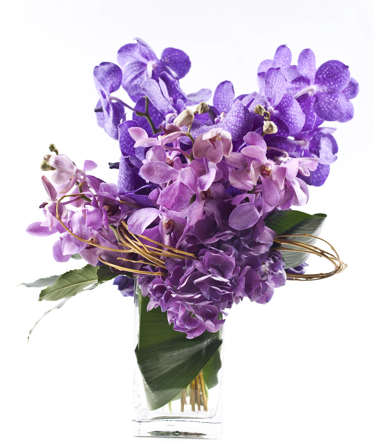 Orchid Arrangements Blooms For All Seasons Flower Magazine