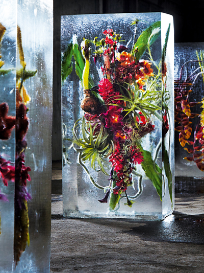 Colorful floral displays in blocks of ice