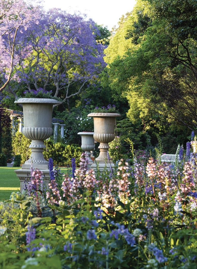 Photo shows purple flowers in foreground, with urns and trees, including a purple flowering small tree, in the background