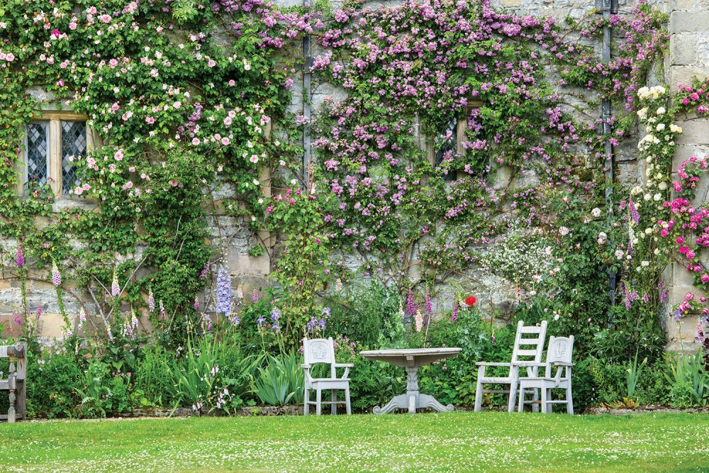 A table and chairs, beside a garden of foxglove and other bloomers, invite visitors to sit and enjoy the high wall of roses at Haddon Hall