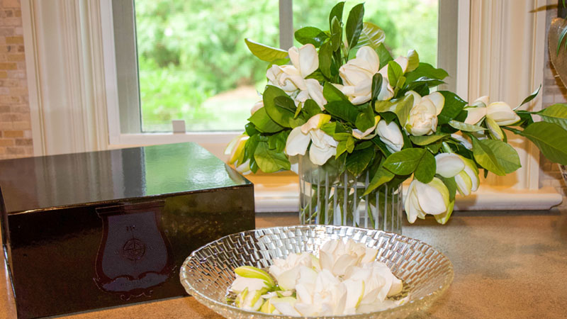 High Camp Gardenia Vine and Bloom Box