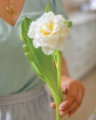 Step 8: adding Honeymoon tulip