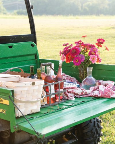 Tractor picnic scene from Julia Reed's South