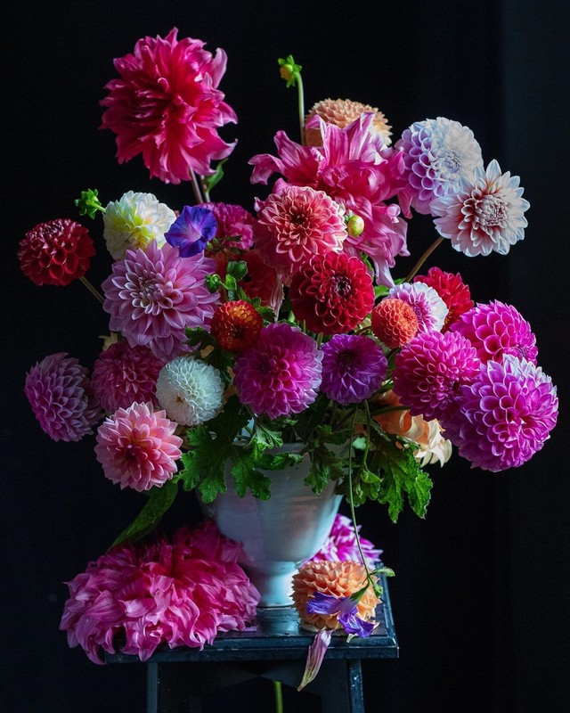 Dahlia flower arrangement