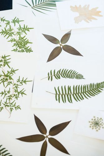 Ryan Miller's pressed botanicals
