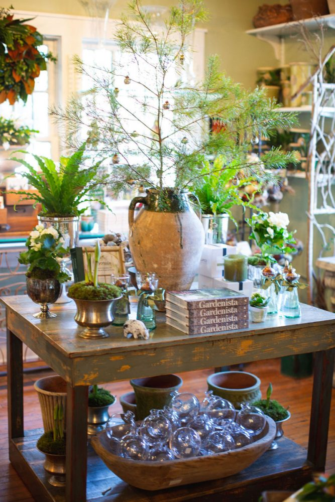 """A holiday display at The Gardener's Cottage in Asheville features an elegantly sparse """"Charlie Brown"""" Christmas tree standing in a rustic pottery jug, various plants and cut flowers in assorted vintage silver-toned containers and glass bottles"""