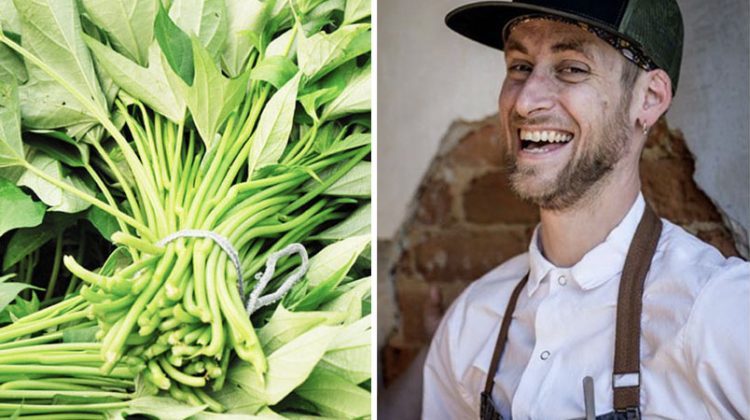 Chef Derek Herre Headshot and Sweet Potato Vines