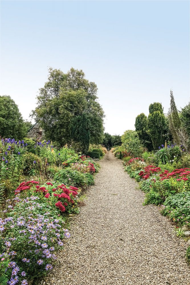 Blooming Irish garden at Glin Castle