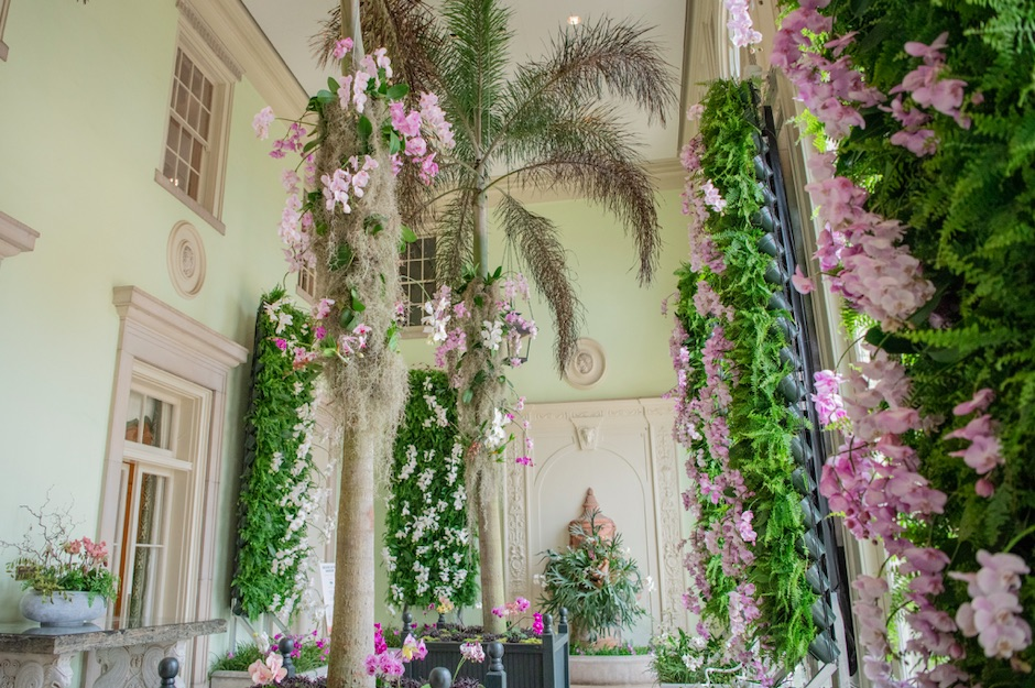 Orchid floral installation at Cheekwood Estate & Gardens
