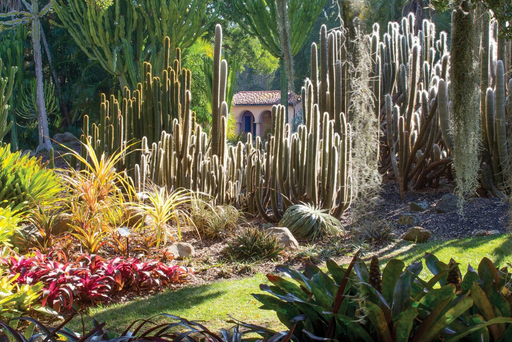 Things to do in Santa Barbara, garden