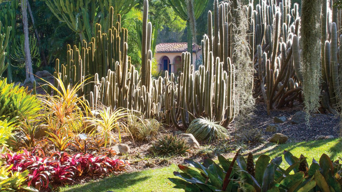 Things to do in Santa Barbara, Lotusland (Photo by Bob Craig, Lotusland)
