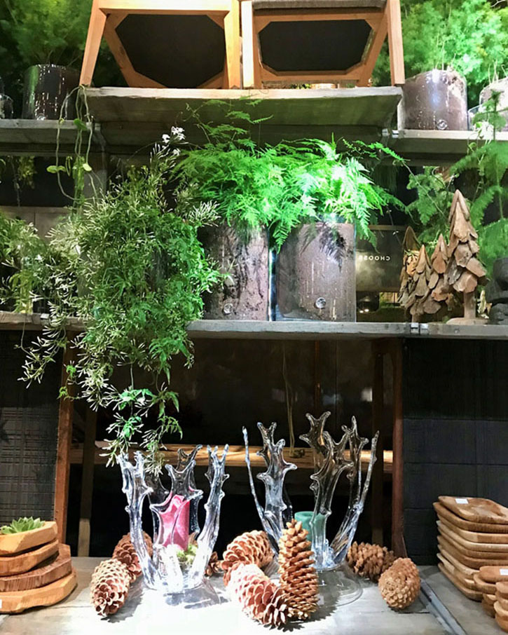 Scene from Maison & Objet 2020: Natural decorative elements including green plants, pine cones, trays and vessels