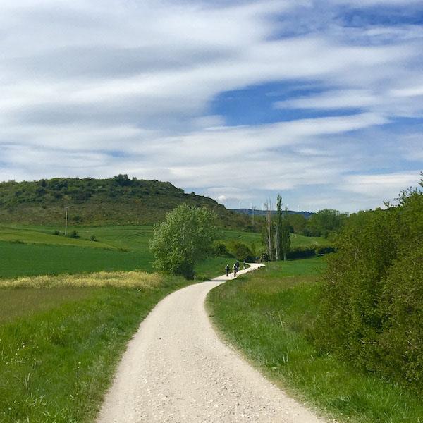 A blue-sky day along the green-lined path path of Camino de Santiago