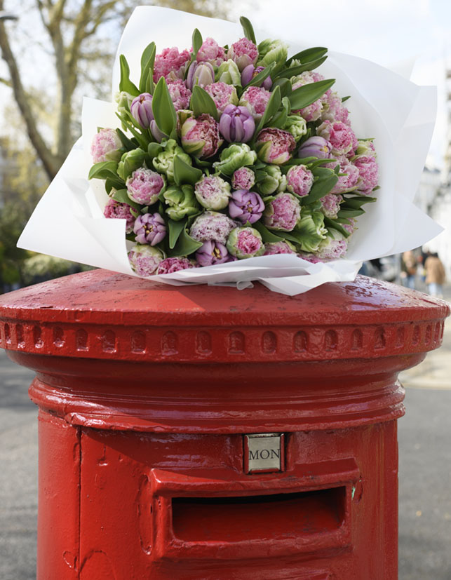 tulips, red post box