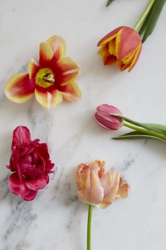 assorted tulip blooms displayed on a white marble countery