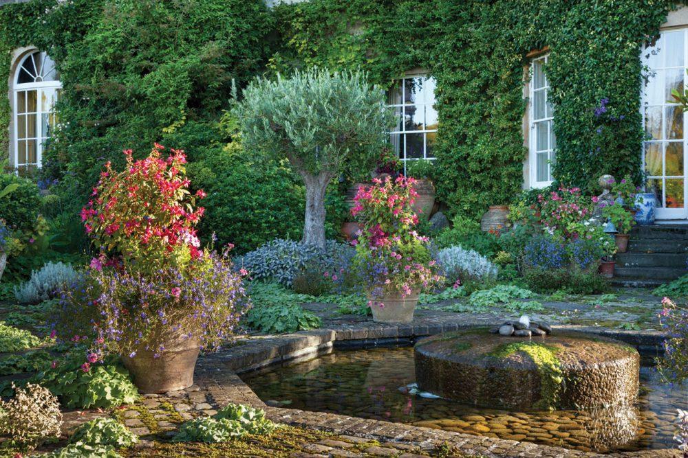 Terrace Garden, September 2012.