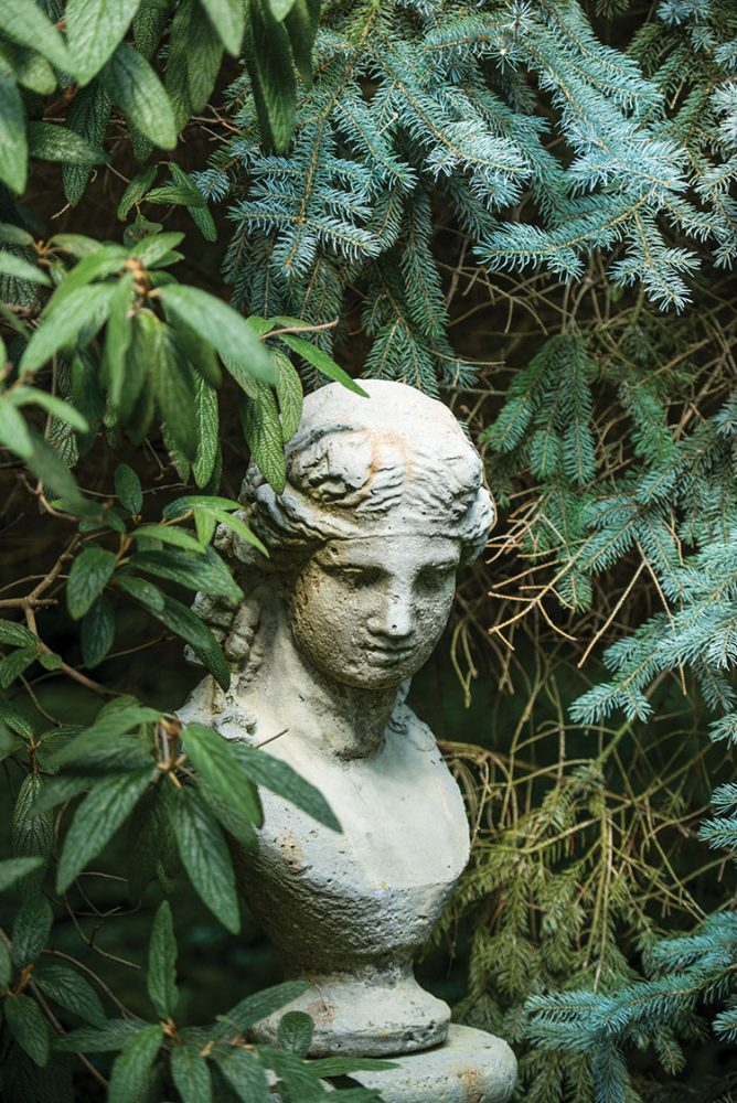 bust of Athena among evergreen foliage