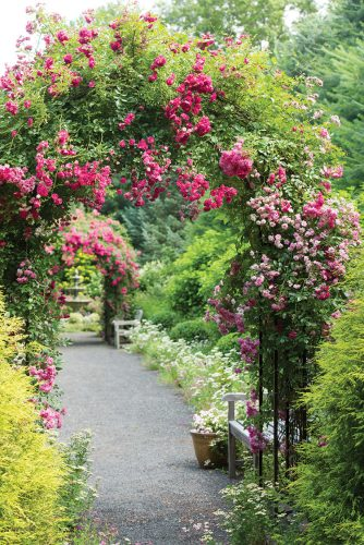 pathway lined with rose-covered archways