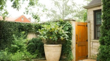 backyard courtyard with pond and pea gravel