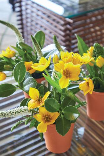 bright yellow floral arrangements