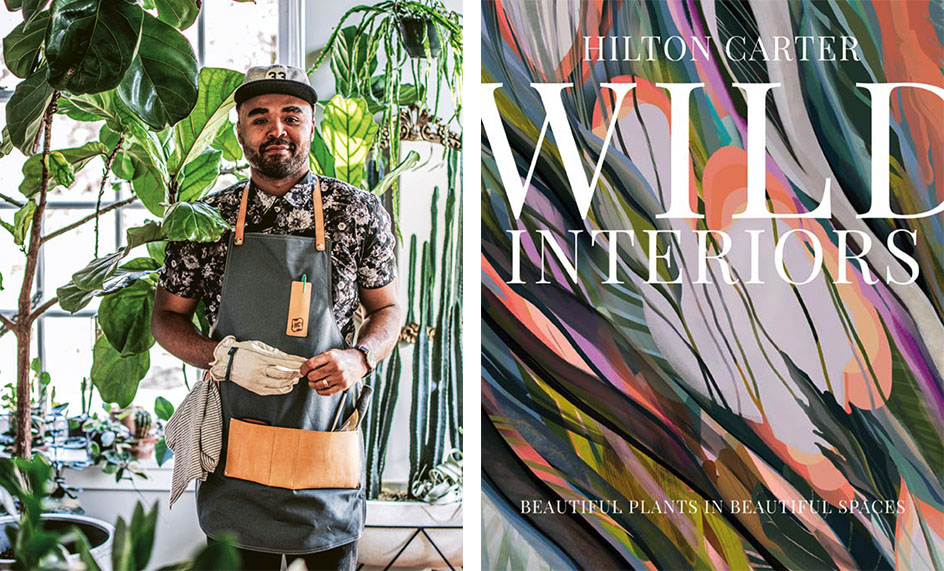 portrait of (left) Hilton Carter wearing a garden apron and one garden glove, surrounded by houseplants. (right_ book cover for Wild Interiors