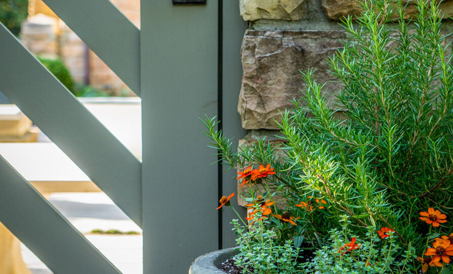 close of up garden gate and a fall container planted with rosemary and thyme