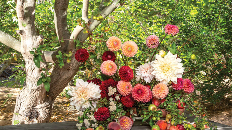 dahlia flower arrangement by Holly Vesecky of Hollyflora, in front of a background of trees