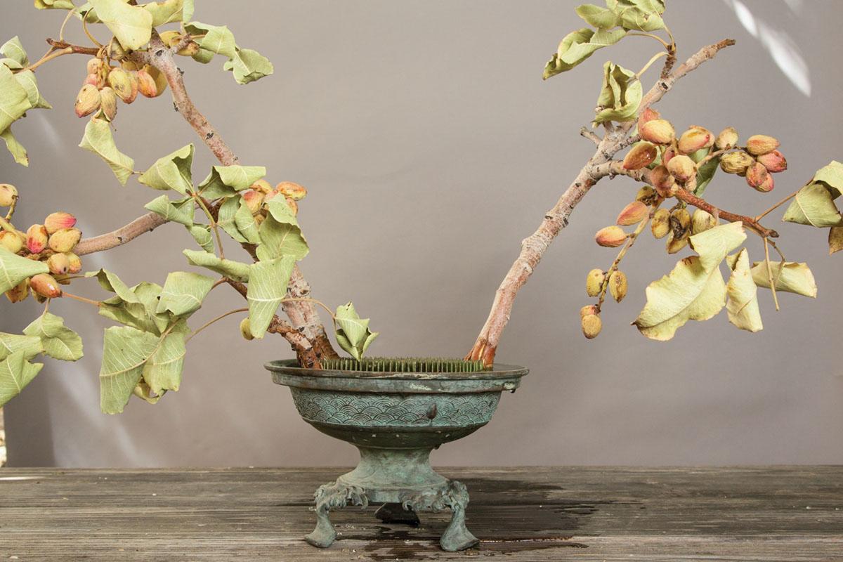 floral tutorial step 2, placing pistachio branches